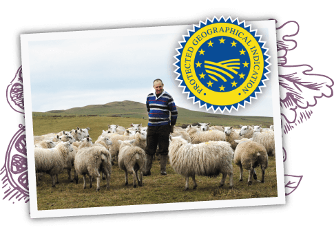 Beef and sheep Market Review for 2015